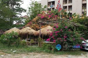 Недорогое кафе в Тайланде