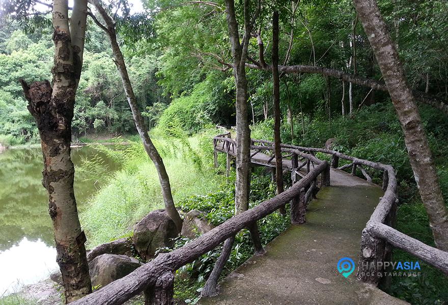 Most_v_Djunglah