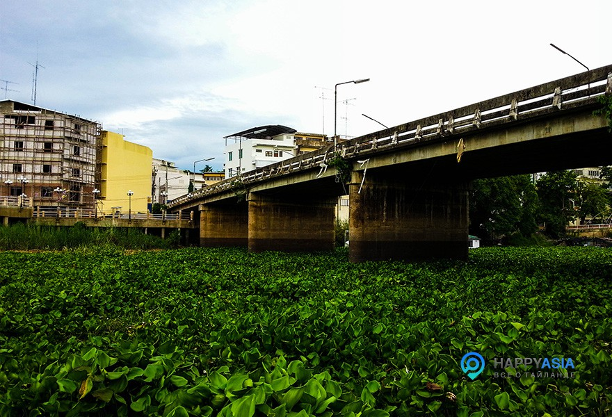 Настоящие реки тайланда