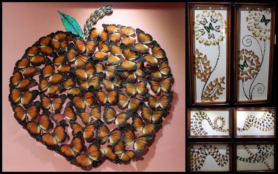 Фотографии из Сада бабочек в Дубае - картины из бабочек