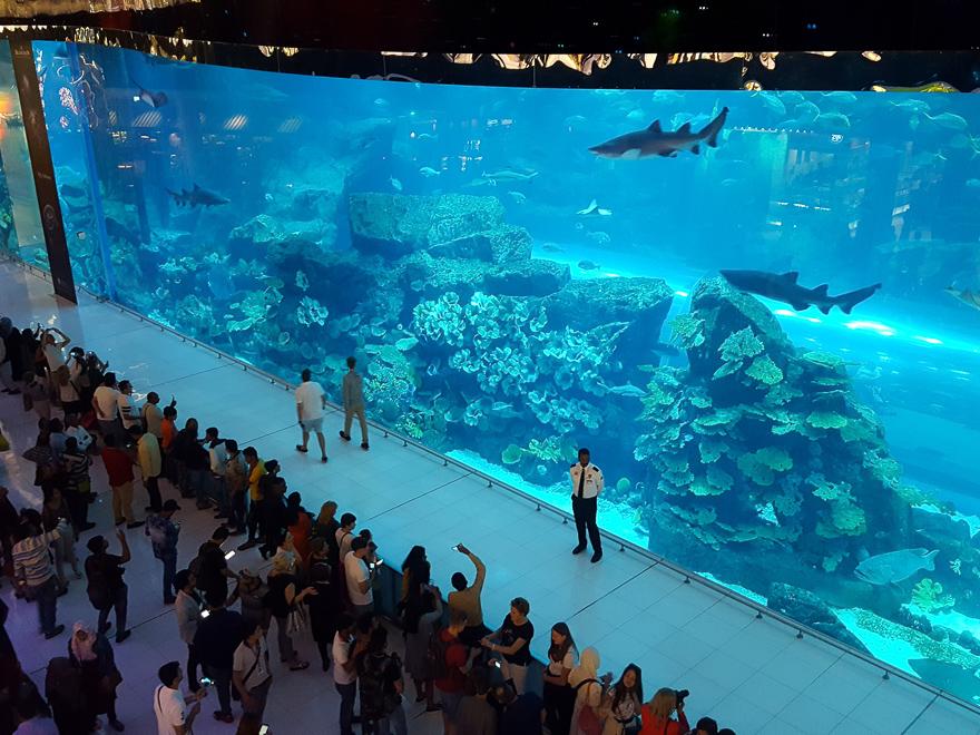 Внешне океанариум в Дубае выглядит так, не очень впечатляет правда.