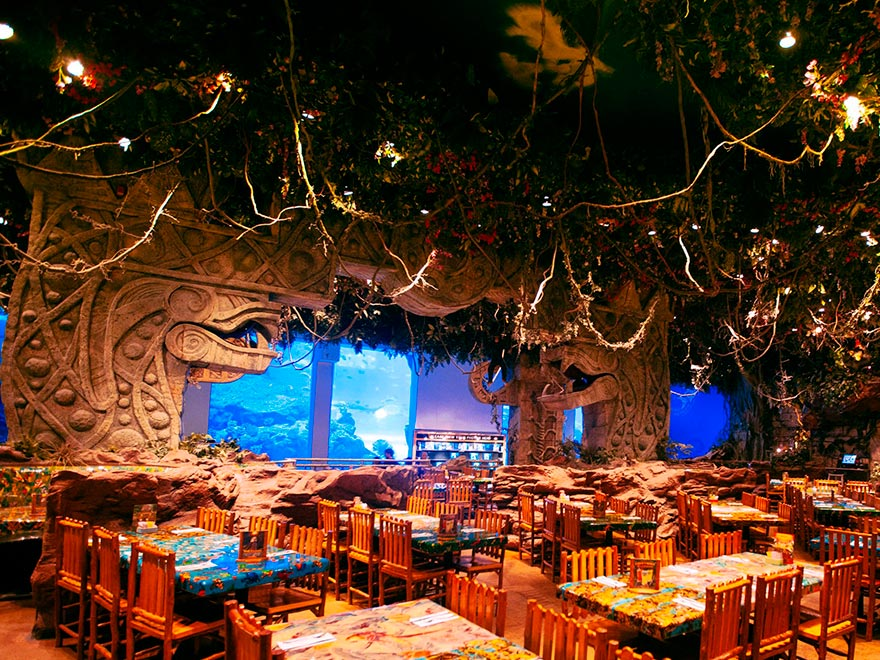 Rainforest Cafe фото