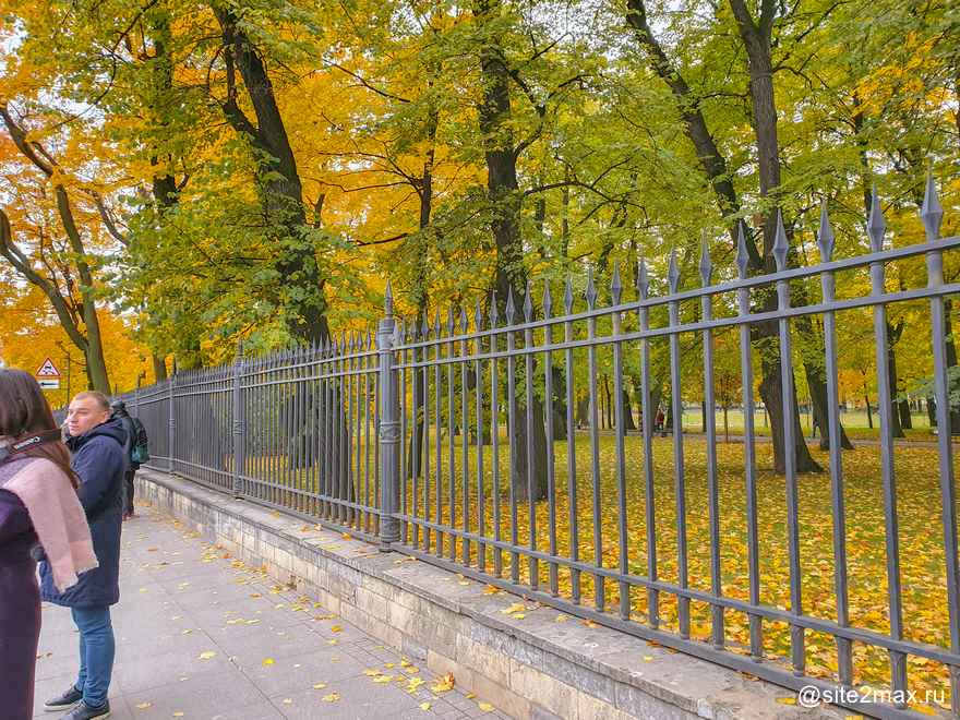 Ограда